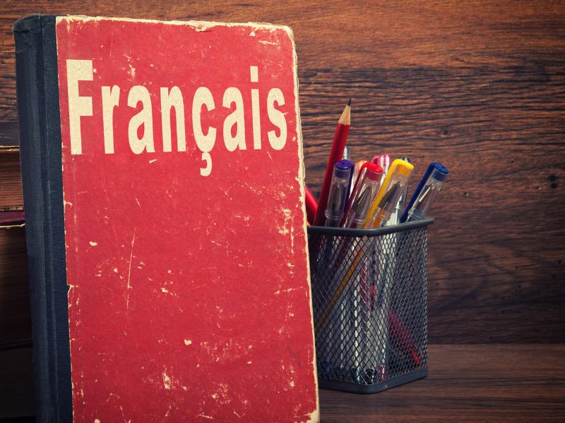 Career in France